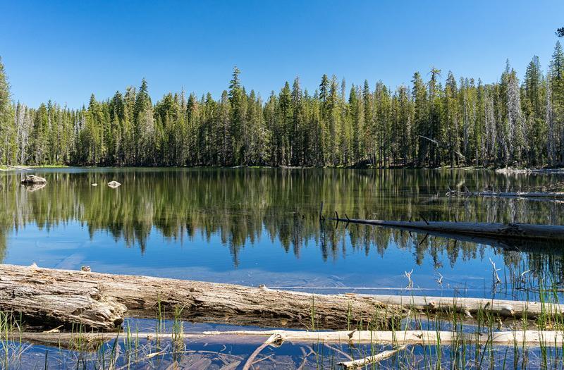 Lassen Area Hiking Trails: Hay Meadow Lakes Loop