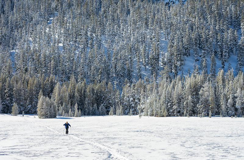 Lake Tahoe Hiking Trails: Snowshoeing Grass Lake, California