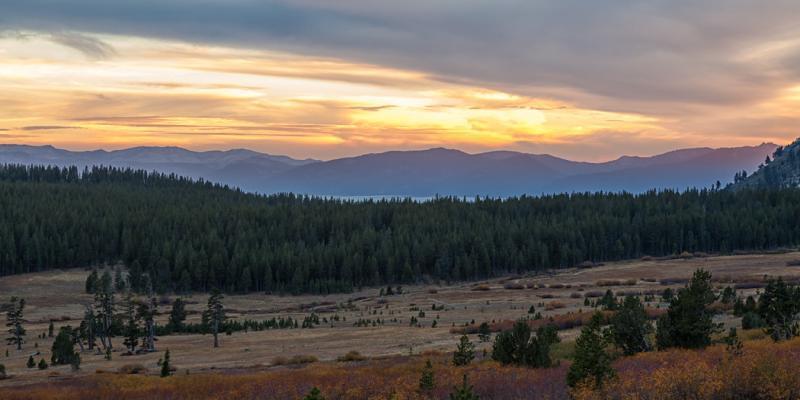 Nevada: Tahoe Meadows Interpretive Loop