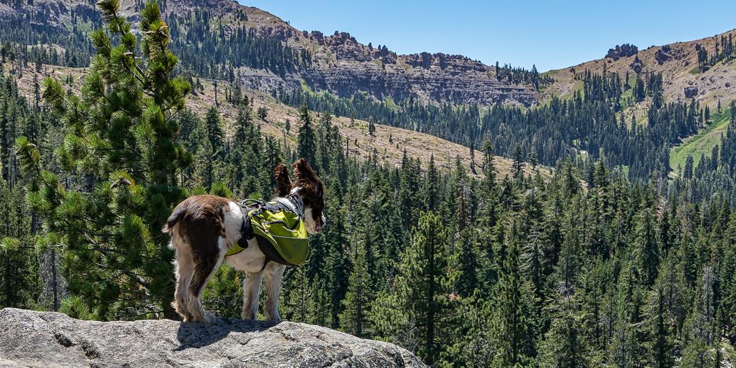 Lake Tahoe Hiking Trails: Mt. Judah Loop