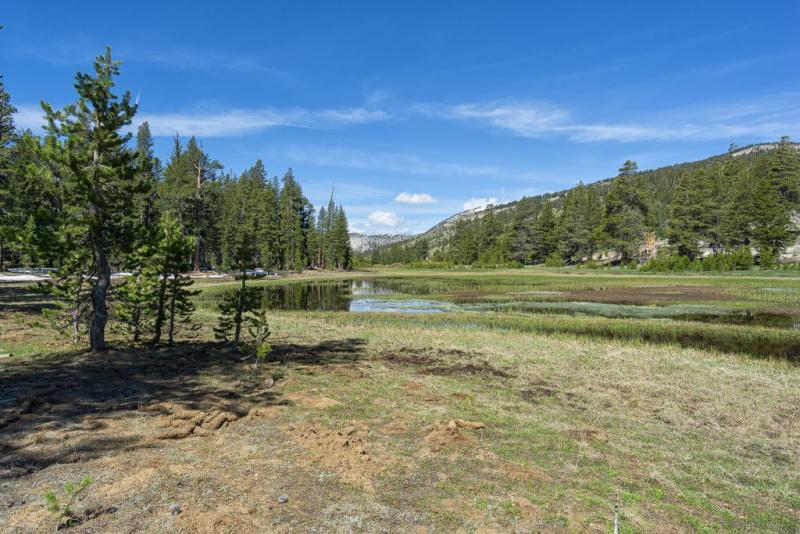 Tahoe Meadows Trail
