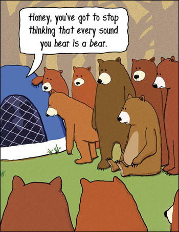 Bear camp cartoon