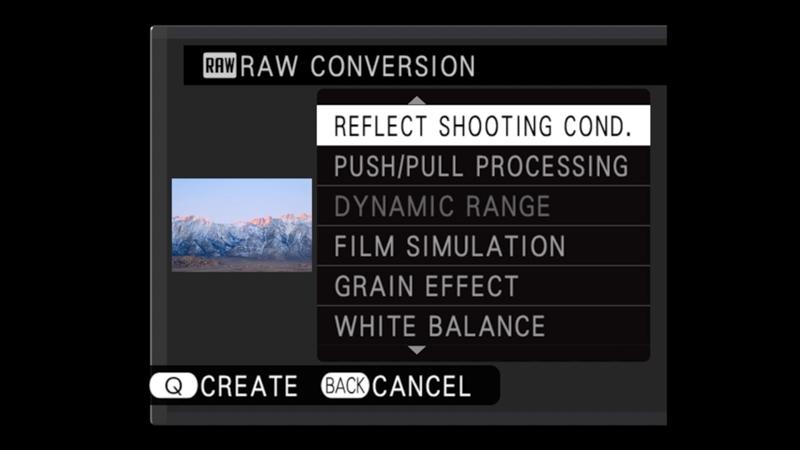 q button raw converter menu