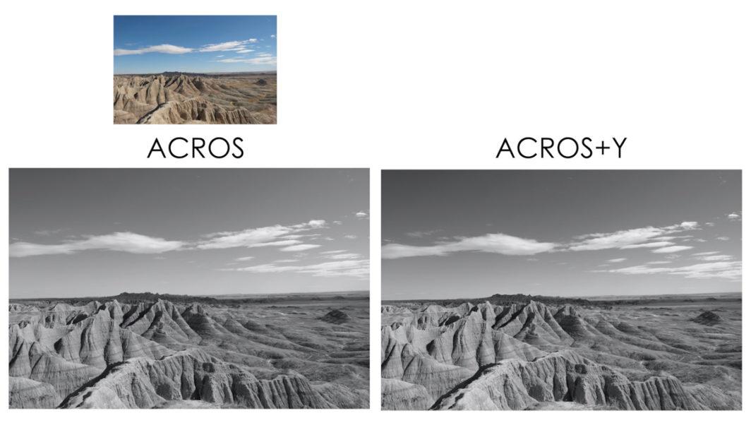 acros vs acrosy