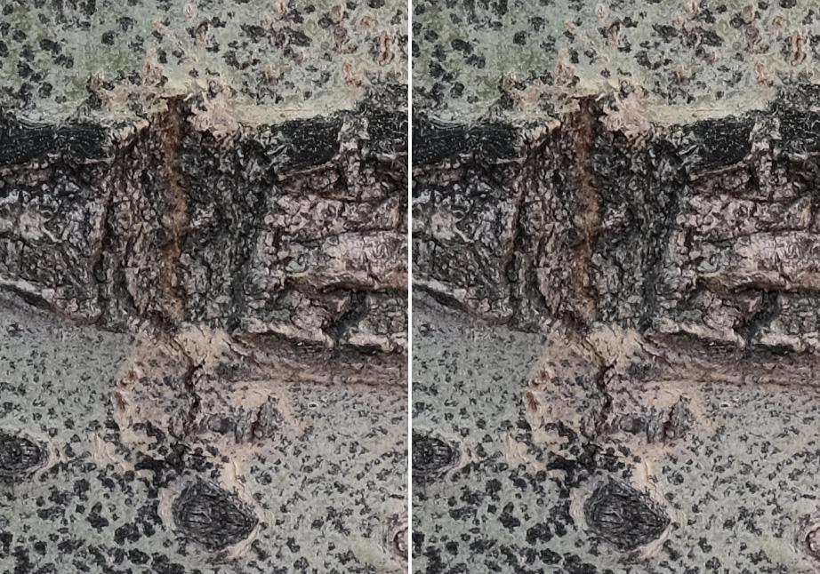 mechanical vs electronic front curtain shutter