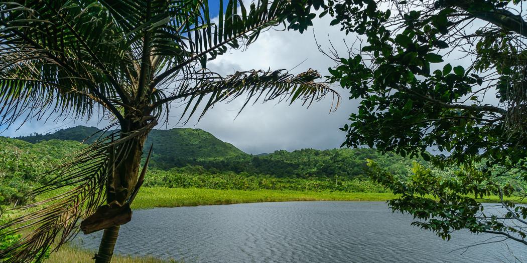 Grenada: Hiking the Grand Etang Lake Shoreline Trail