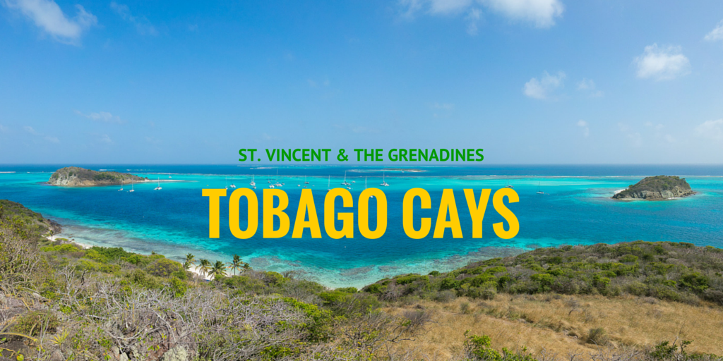 Sailing in the Tobago Cays